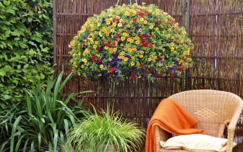 Что стоит знать об аллергии на пыльцу растений?
