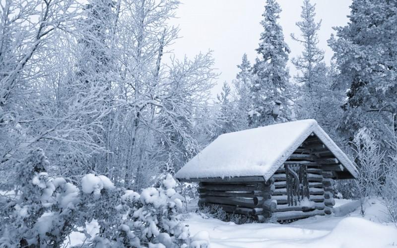finliandiia-zima-sneg-les-derevia-khizhina-izbushka