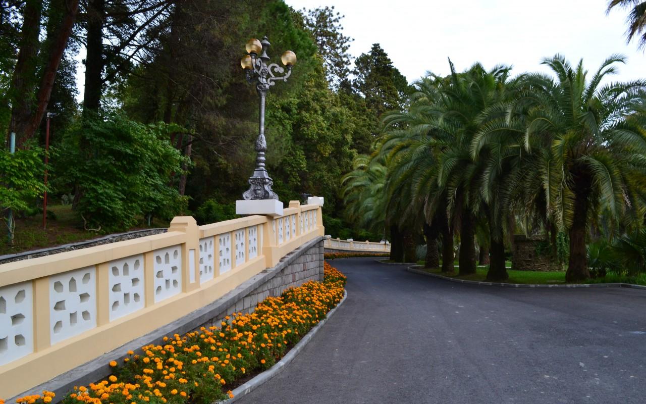 sochi-park-dendrariy-palmy