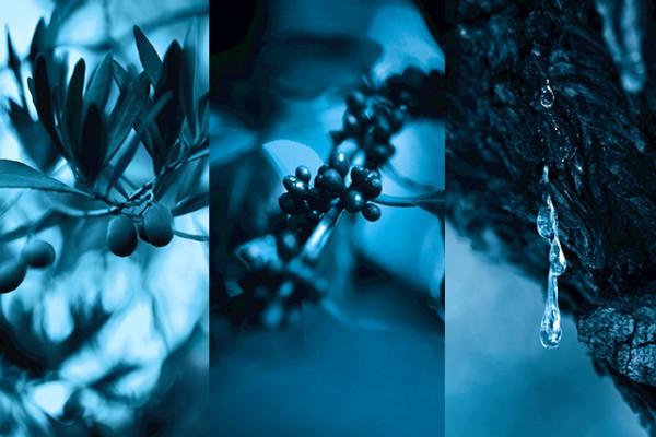 tajna-dugovecnosti-u-plavom-serumu-chanel (1)
