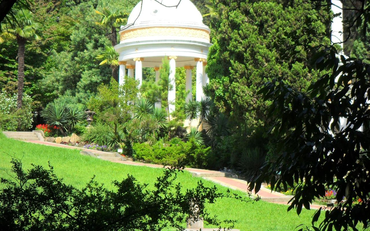 derevya-park-priroda-leto-sochi