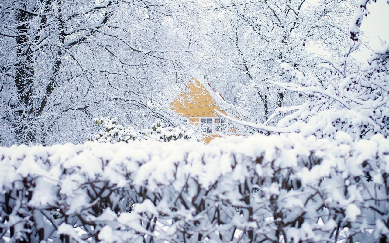 norvegiya-oslo-zima-sneg-dom