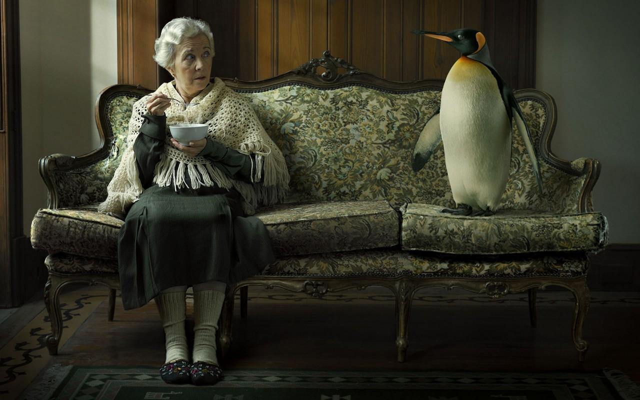 babushka-divan-pingvin