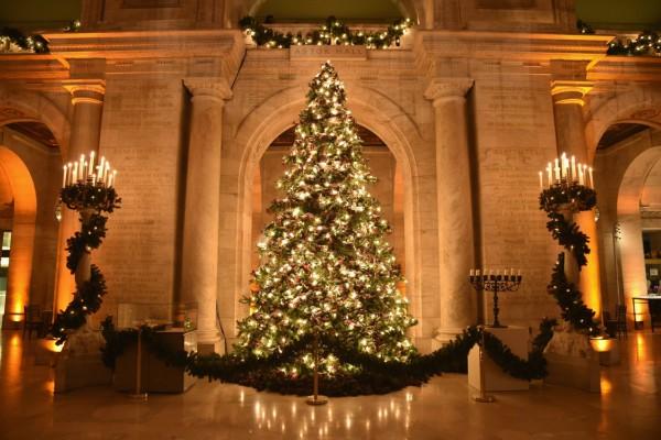 Самые красивые елки 2018