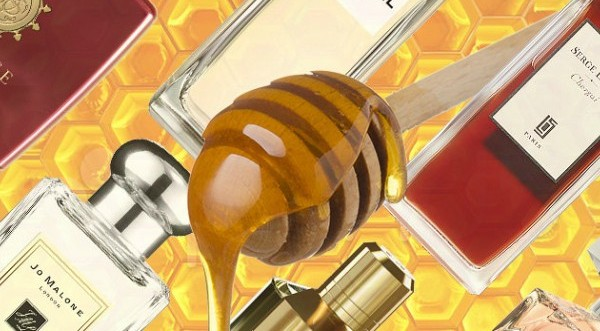 Согреться зимой: ароматы с нотами меда