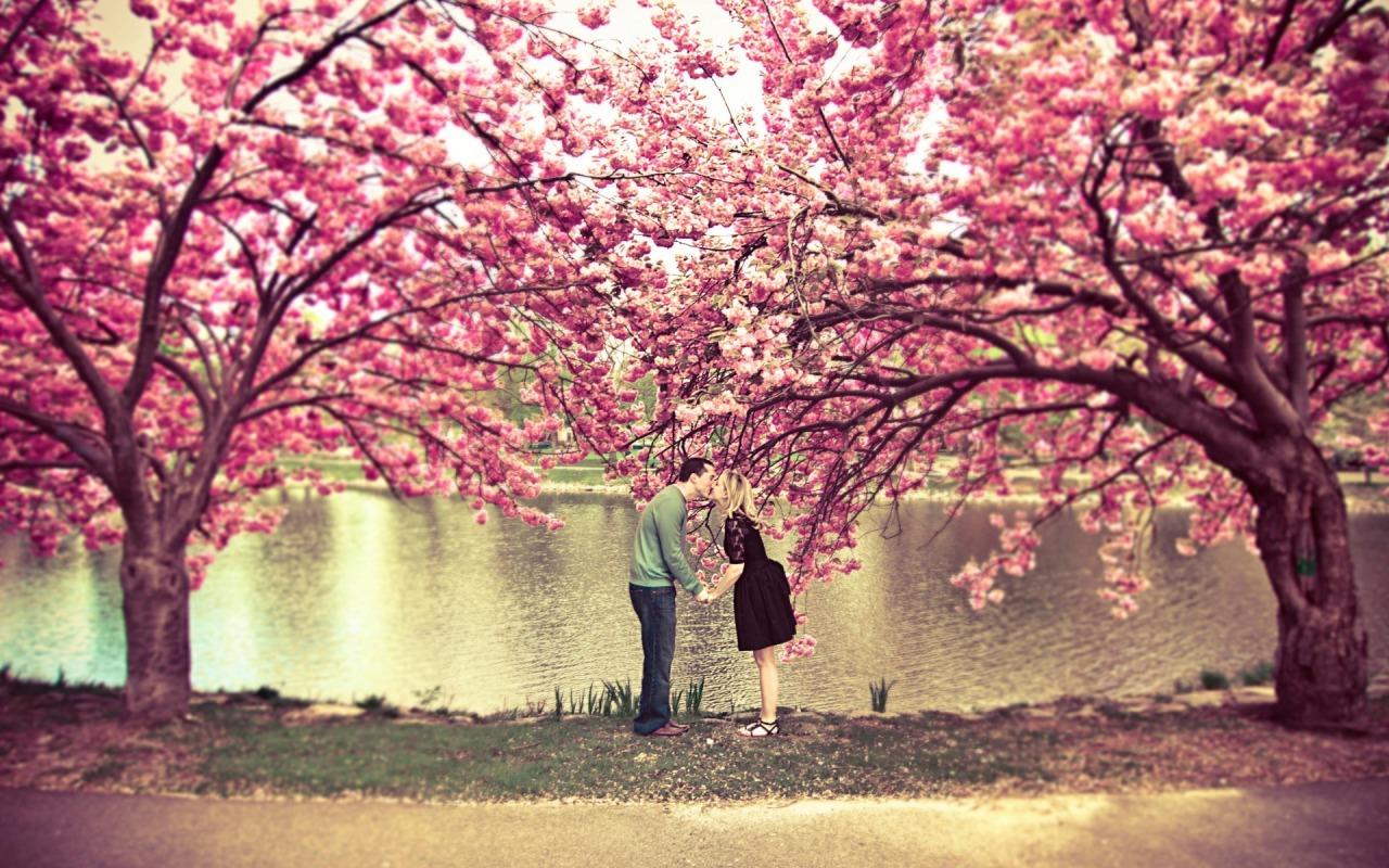 nastroenie-priroda-romantika