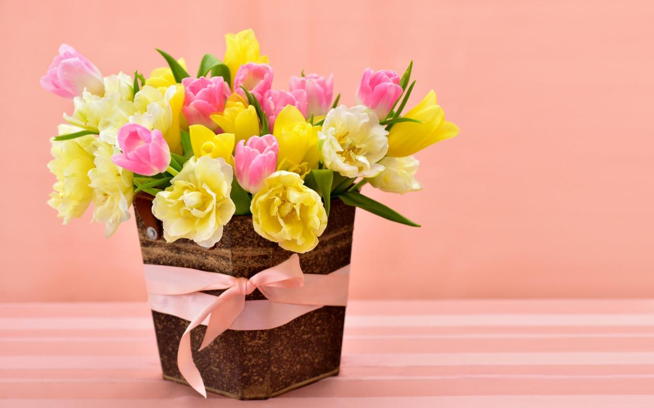 tulips-spring-flowers-vesna