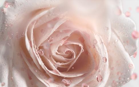 Dior Prestige для ухода за кожей