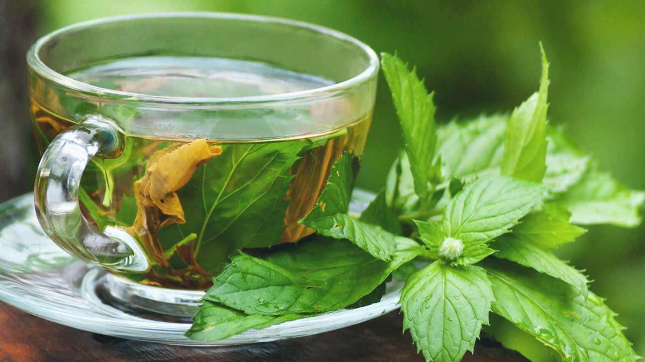 1296x728_Which_Herbal_Teas_Are_Safe_to_Drink_During_Pregnancy-2-Peppermint_Leaf_Tea