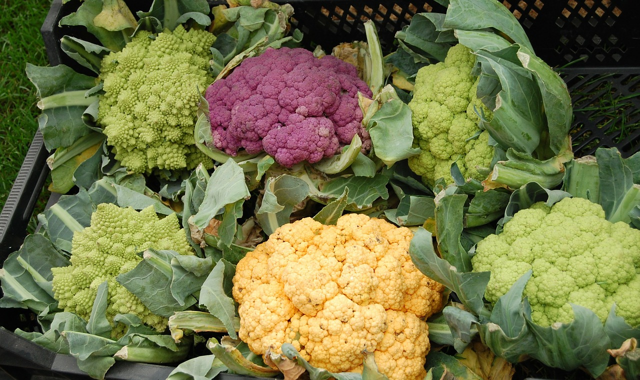 cauliflower-59097_1280