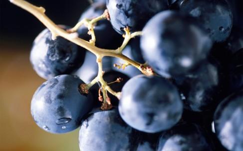 Как обычный виноград поможет вам стать лучше?