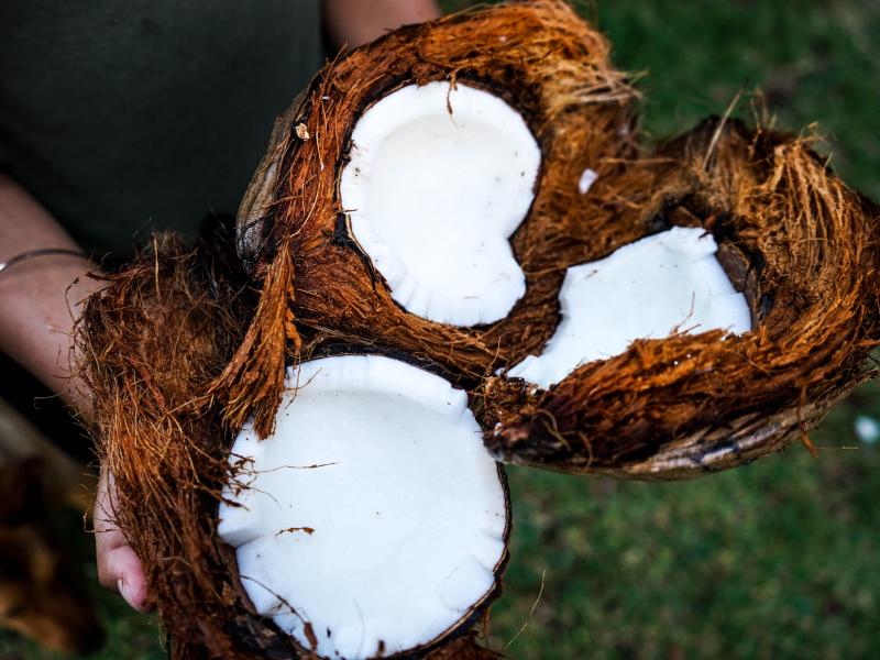 10-nacina-za-koriscenje-kokosovog-ulja-za-negu-kose-2006-0b