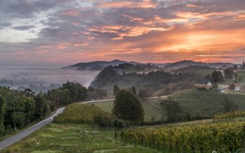 Словения: путь заботы о здоровье