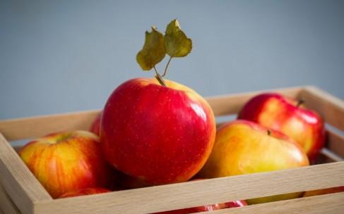 Чем питаться в жару: советы диетолога