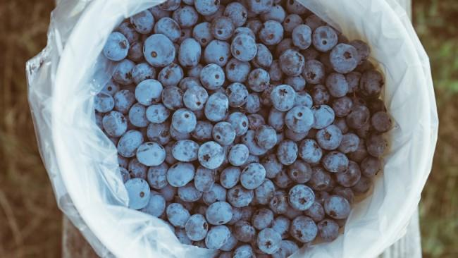 Продукты для нестареющих женщин: антиоксиданты