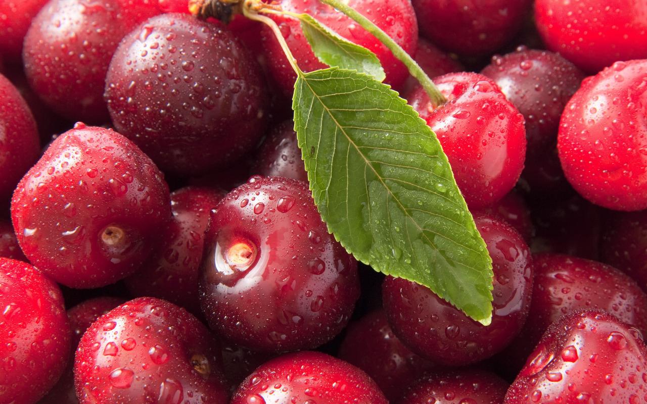 sweet-cherry-ciliege-macro