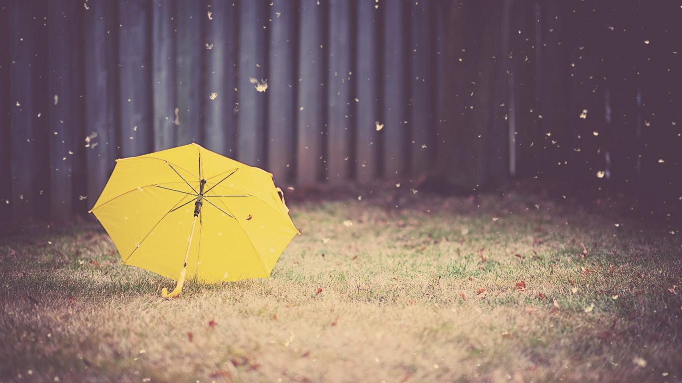 umbrella-14479-15101-hd-wallpapers