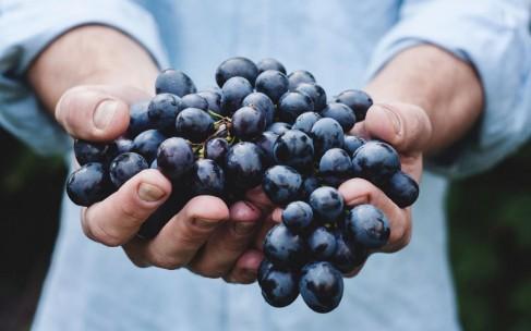 Какое вино полезнее для здоровья?
