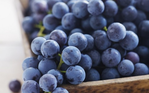Виноград для лица: польза, рецепты масок