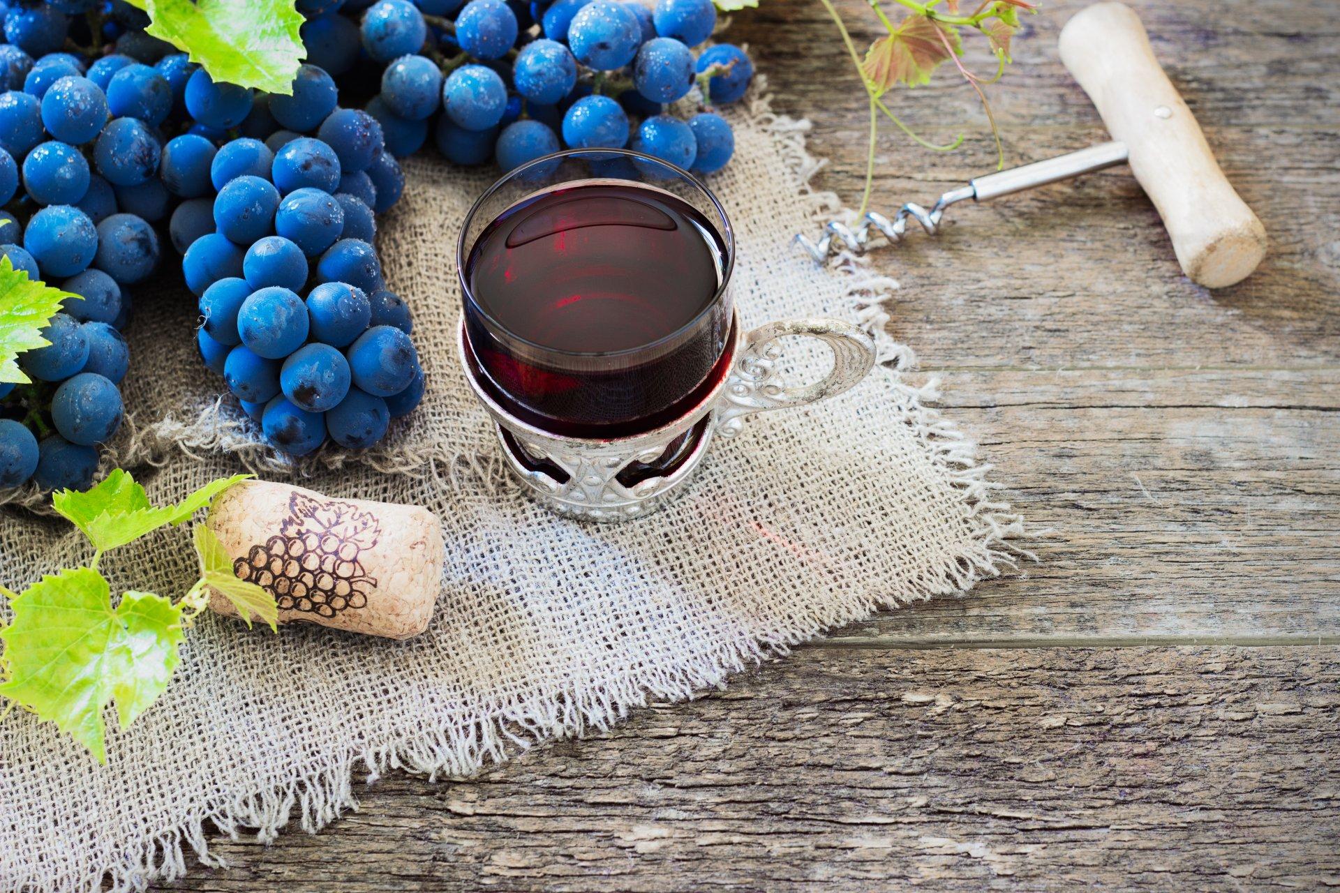 grožđe-eliksir-mladosti