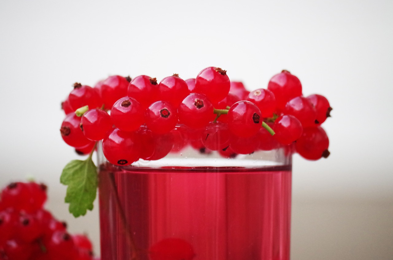 Чем полезна красная смородина? | Модные тренды | Красота