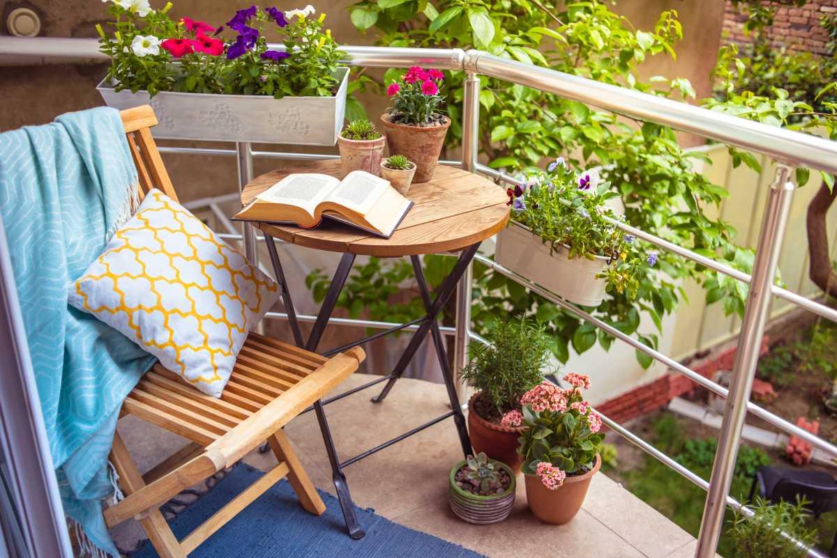Огородные растения на балконе: идеи