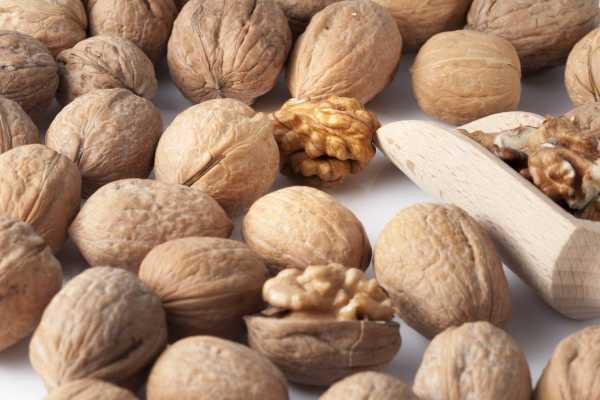 10-super-proizvoda-koje-vredi-jesti-tokom-jesenje-sezone (12)