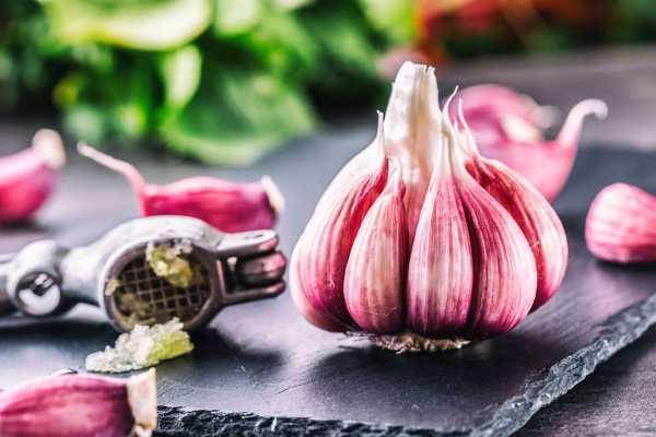 10-super-proizvoda-koje-vredi-jesti-tokom-jesenje-sezone (3)