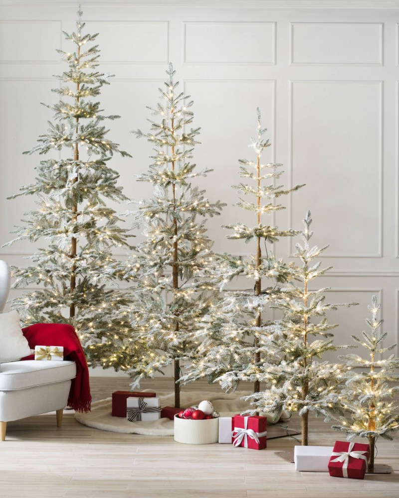 ABF-Q_Frosted-Alpine-Balsam-Fir_Lifestyle-10