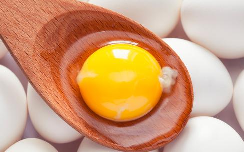 Яичный белок: польза и вред для здоровья