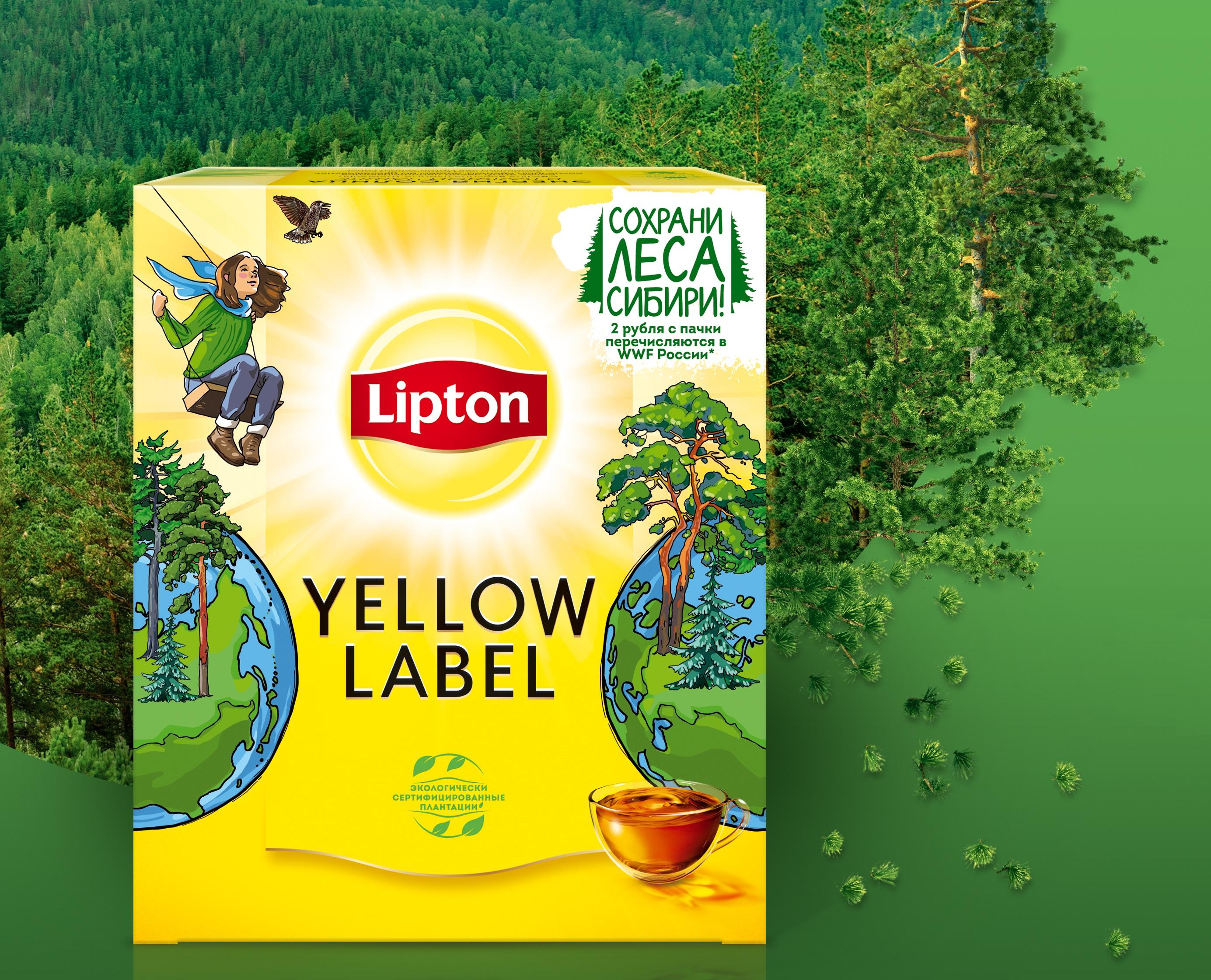 Сохраните леса Сибири вместе с Lipton