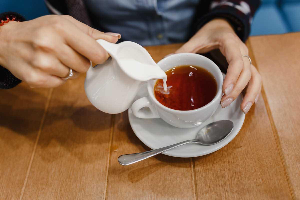 Можно ли пить чай с молоком?