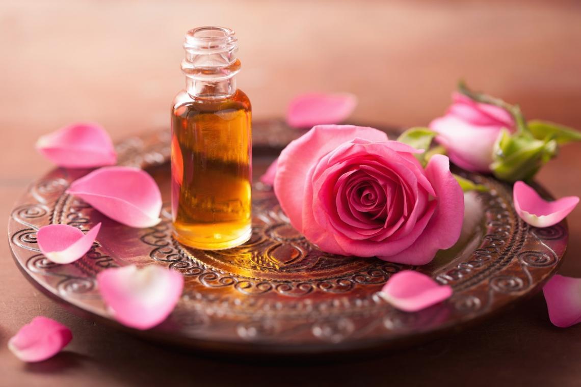 ulje-divlje-ruže-eclectic_large