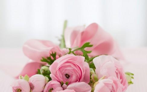 Способы применения розовой воды