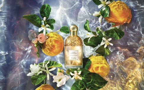 Свежесть лета — цитрусовые ароматы
