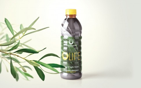 Победить время: экстракт оливковых листьев