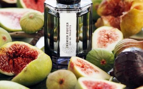 Возвращение в лето: ароматы с нотами инжира