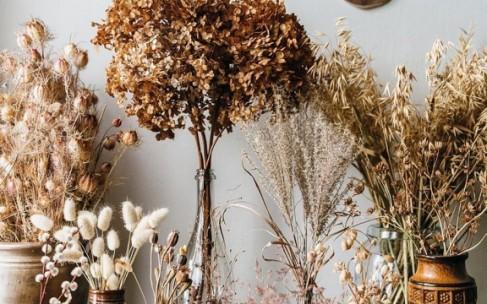 Букеты из сухоцветов в вашем доме