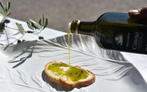 Дегустация оливкового масла холодного отжима