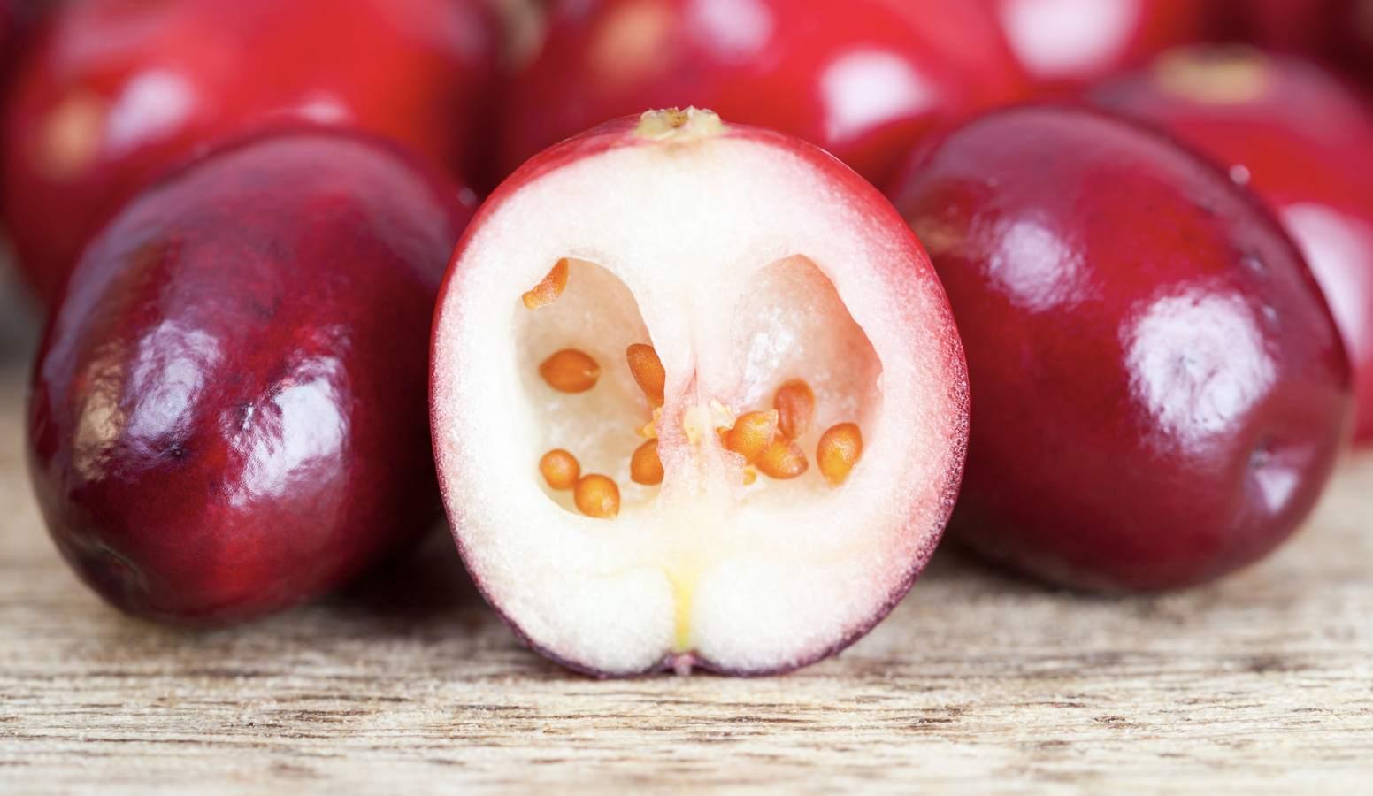 Масло семян клюквы: свойства и применение