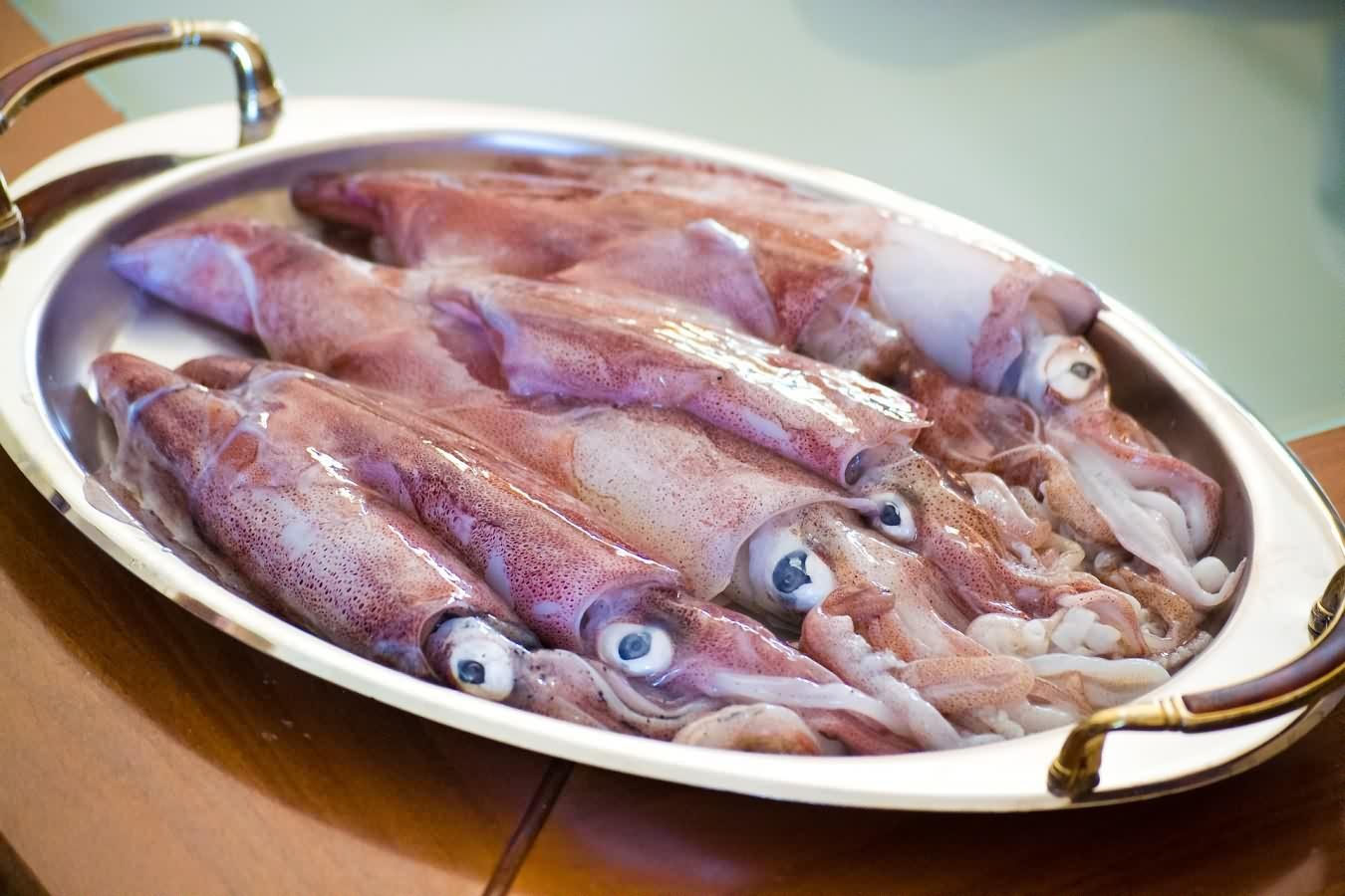 calamari-2942624_1920