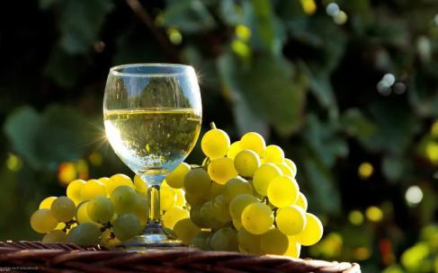 Tsereteli Winery – из самого сердца Грузии