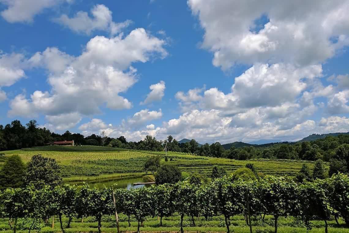 crane-creek-vineyards-2-1510687395