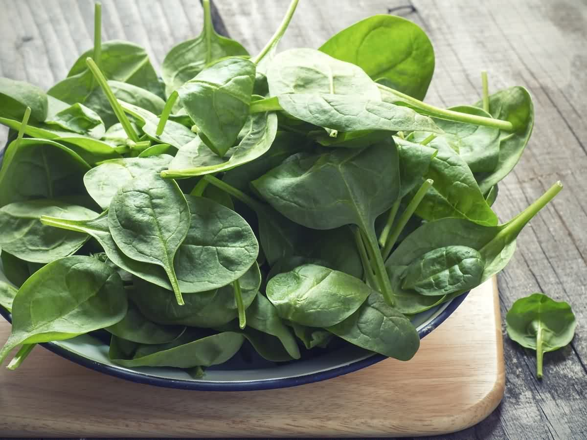 vitamins-supplements-herbs_vitamins_vitamin-b9-folate_62183930