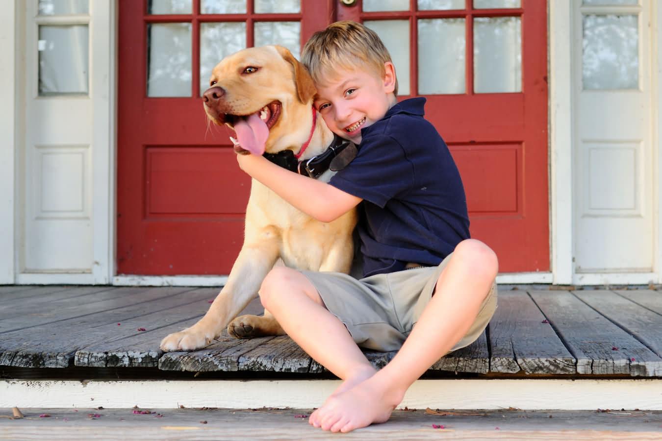 Who is who: породы собак, которые легко перепутать новичкам